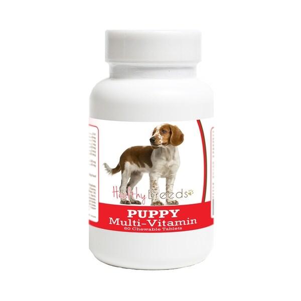 Shop Healthy Breeds Welsh Springer Spaniel Puppy ...