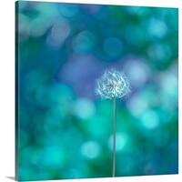 Premium Thick-Wrap Canvas entitled Dandelion with blue and green background. - Multi-color