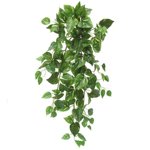 "Pothos Ivy Hanging Greenery Foliage Bush 35in - 35"" L x 16"" W x 16"" DP"