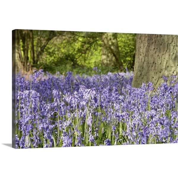 """Lavender field"" Canvas Wall Art"