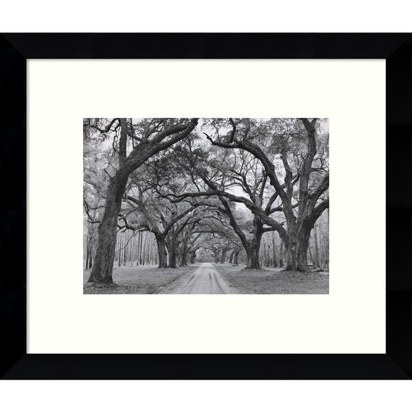 Framed Art Print 'Oak Arches' by Jim Morris 11 x 9-inch. Opens flyout.