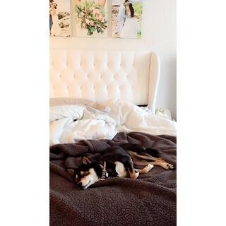 Skyline Furniture Tufted Wingback Bed in Velvet White