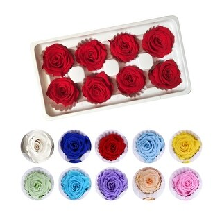 Preserved Roses - Box of 8 Heads