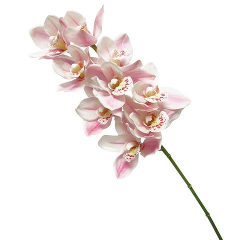Set of 2 Real Touch Cymbidium Orchid Stem 27.5in