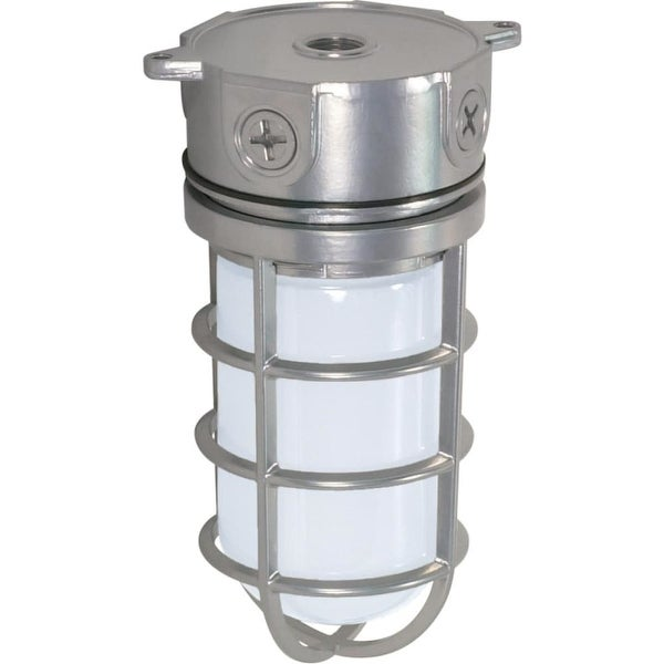 "Nuvo Lighting 76/624 1-Light 4-1/4"" Wide Outdoor Flush Mount Ceiling Fixture - Metallic Silver - N/A"