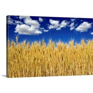 """Field of wheat"" Canvas Wall Art"
