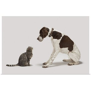 """Pointer looking down at cat"" Poster Print"