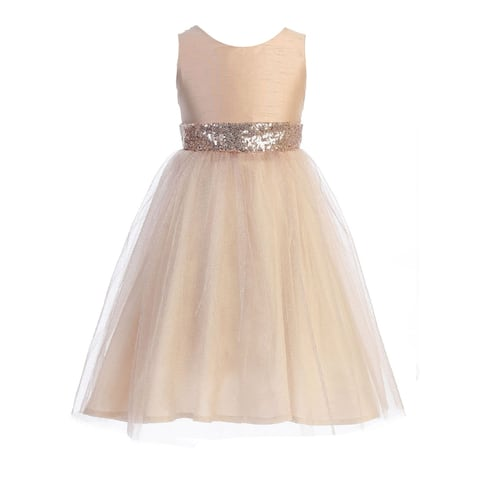 Kids Dream Blush Sequin Glitter Tulle Plus Size Dress Big Girls