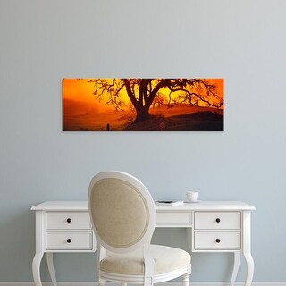 Easy Art Prints Panoramic Images's 'Silhouette of oaks trees, Central Coast, California, USA' Premium Canvas Art