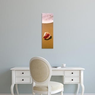 Easy Art Prints Panoramic Images's 'View of a conch shell on the beach, Fernandez Bay, Cat Island, Bahamas' Canvas Art
