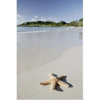 """Starfish on beach of Caribbean Sea, Virgin Islands"" Poster Print"