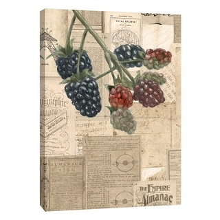"PTM Images 9-105399  PTM Canvas Collection 10"" x 8"" - ""Academic Raspberry Illustration"" Giclee Berries Art Print on Canvas"