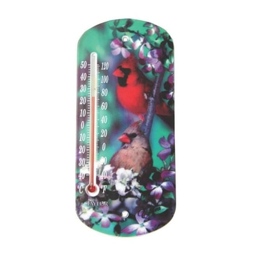 """Taylor 5204 Outdoor Thermometer Window, 8-1/2"""""""