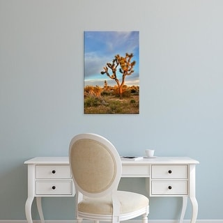 Easy Art Prints Jamie & Judy Wild's 'Joshua Tree At Sunrise' Premium Canvas Art