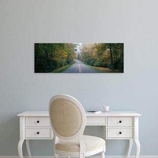 Easy Art Prints Panoramic Images's 'Trees along a road, Blue Ridge Parkway, North Carolina, USA' Premium Canvas Art