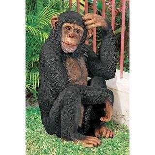 Design Toscano Chauncey the Confused Chimp Garden Monkey Statue