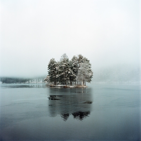 Snowy Pine Trees And Lake Photograph Art Print