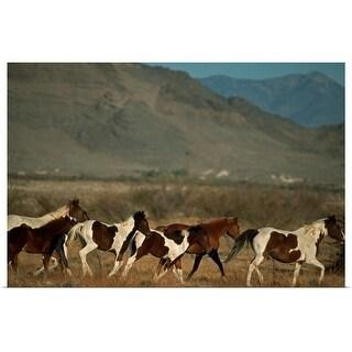 """Horse herd running"" Poster Print"