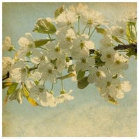 ''Spring Bloom'' by Anon Fairfield Art Publishing Art Print (16.5 x 16.5 in.)