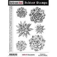 """Darkroom Door Cling Stamps 7""""X5""""-Succulents"""