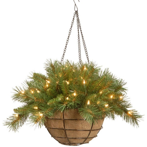 """20"""" Pre-Lit Battery-Operated Tiffany Fir Artificial Christmas Hanging Basket - Warm White LED Lights - green"""