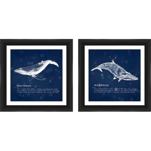PTM Images 1-22106 Ocean Whales Graphic Prints (Set of 2) - N/A