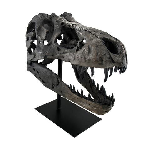 Gray Finished Tyrannosaurus Rex Fossil Skull Statue On Museum Mount T-Rex - 19 X 18.5 X 12 inches