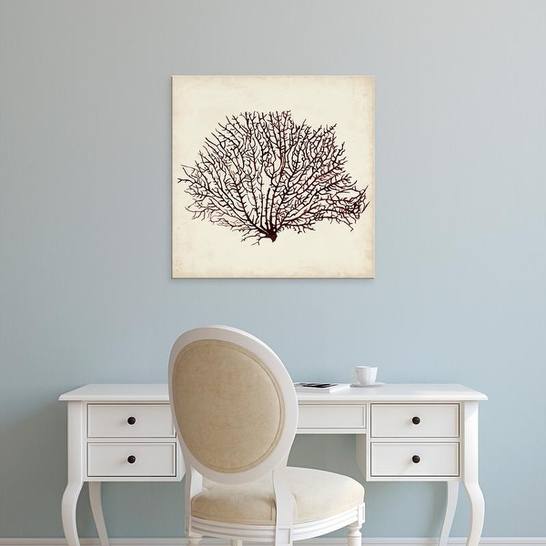 Easy Art Prints Naomi McCavitt's 'Seaweed Specimens XII' Premium Canvas Art