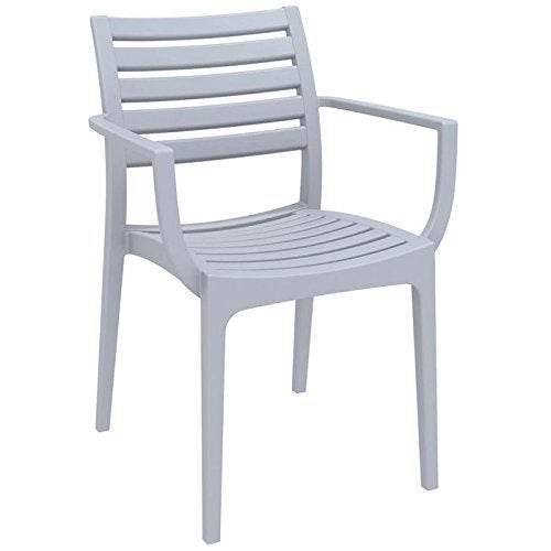 Artemis Outdoor Dining Arm Chair (Set of 2) - Silver