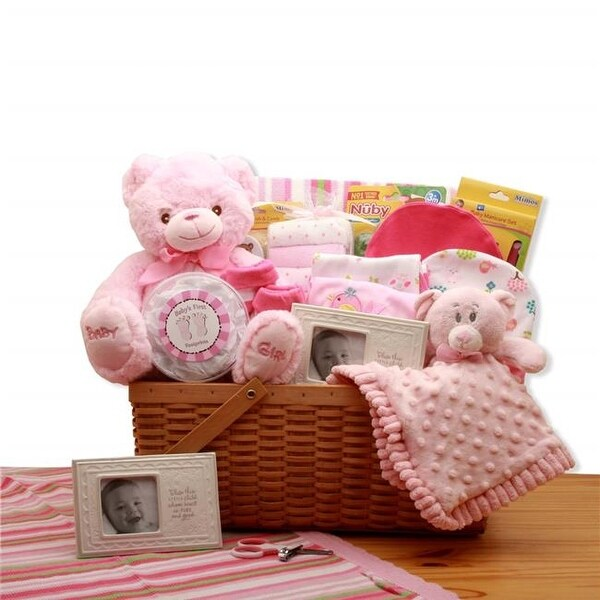 Shop GBDS 890792-P My First Teddy Bear New Baby Gift Basket - Pink - Free Shipping Today - Overstock - 26486379
