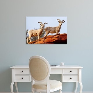 Easy Art Prints Maresa Pryor's 'Desert Bighorn Sheep' Premium Canvas Art