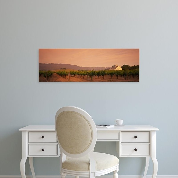 Easy Art Prints Panoramic Images's 'Trees In A Vineyards, Napa Valley, California, USA' Premium Canvas Art