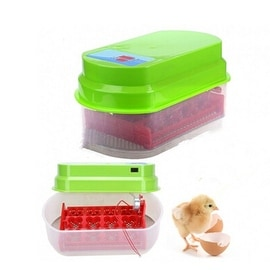 12 Eggs Incubator Auto-turning 110V OR 220V Poultry Hatcher Chicken, Duck, Goose 220V