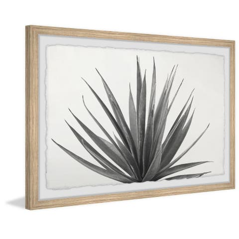 'Marginata' Framed Painting Print