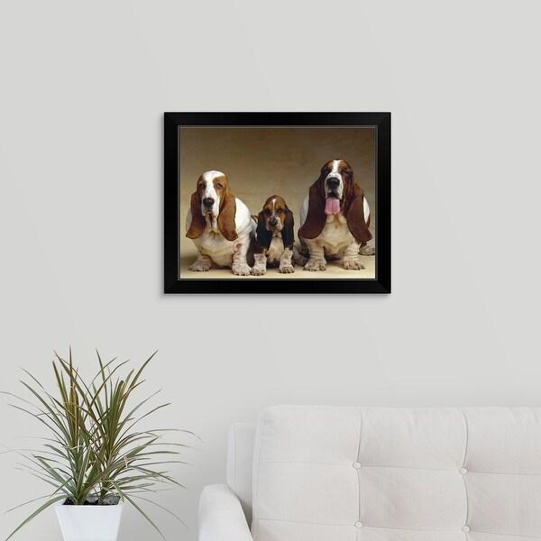 """Family portrait of Basset Hounds"" Black Framed Print"