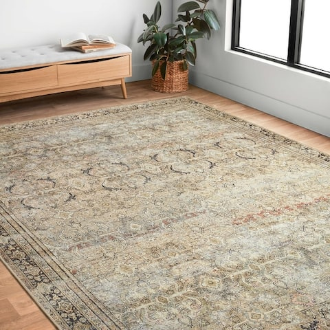 Alexander Home Victoria Traditional Vintage Border Area Rug