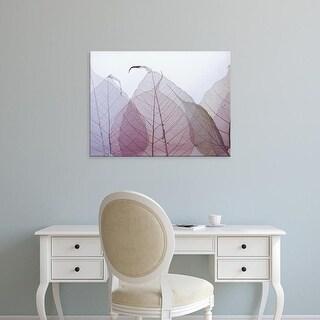 Easy Art Prints Durwood Zedd's 'Chardonnay' Premium Canvas Art