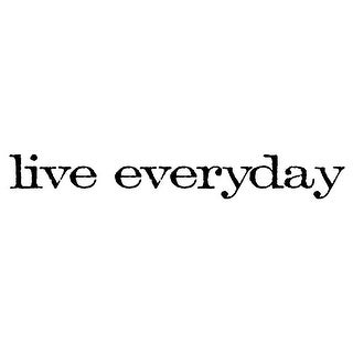 "Tim Holtz Mounted Red Rubber Stamp .75""X2.5""-Live Everyday"