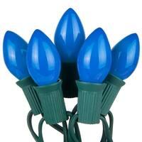 Wintergreen Lighting 67233 25 C7 5W Holiday Bulbs on Green Wire
