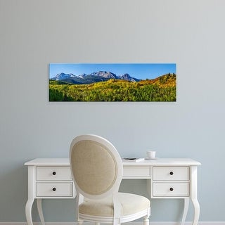 Easy Art Prints Panoramic Images's 'Aspen trees with mountains, Uncompahgre National Forest, Colorado' Canvas Art