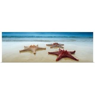 """Starfish in Queensland, Australia"" Poster Print"