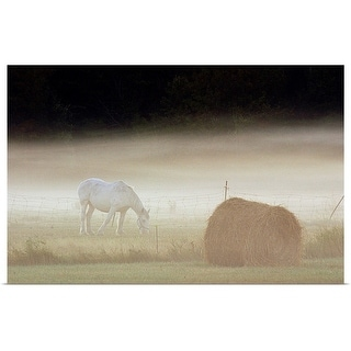 """""""Horse grazing in pasture in morning mist"""" Poster Print"""