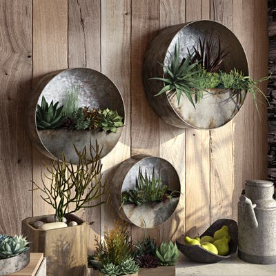 "Aria Succulent Wall Planters (Set of 3) - 16""H x 16""W / 12.5""H x 12.5""W / 10""H x 10"" W"