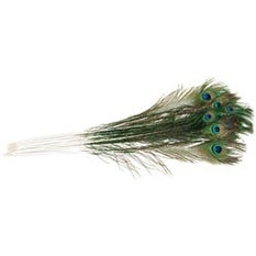Natural - Peacock Eye Feathers 12/Pkg