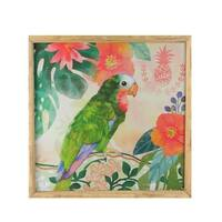 "14"" Green and Pink Parrot Bird Decorative Wooden Framed Prints Wall Art"