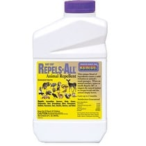 Bonide 237 Natural Animal Repellent, 1 Quart,Concentrate