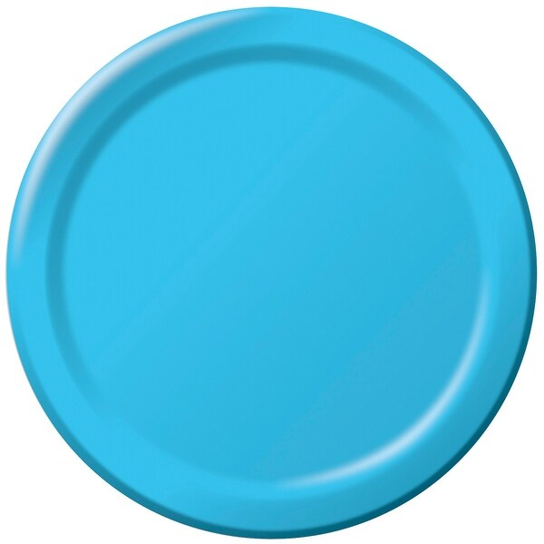 """Dinner Plates 8.75"""" 24/Pkg-Pastel Blue"""