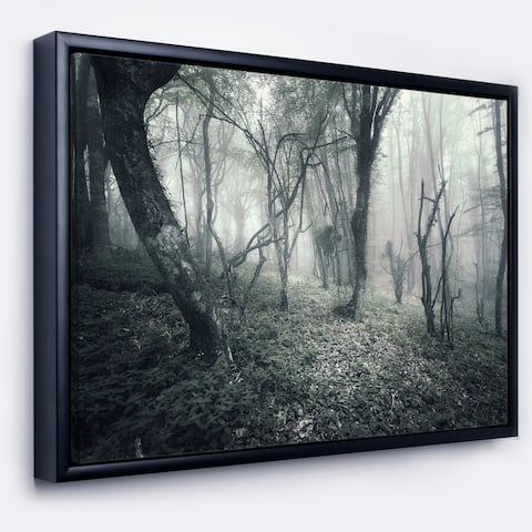 Designart 'Vintage Forest Filled with Fog' Landscape Photography Framed Canvas Print