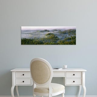 Easy Art Prints Panoramic Images's 'Fog in aspen forest, Grand Teton National Park, Teton County, Wyoming' Canvas Art