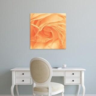 Easy Art Prints Keri Bevan's 'Georgia' Premium Canvas Art
